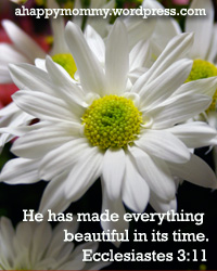 He has made all things beautiful